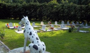 cimitero-animali-piemonte